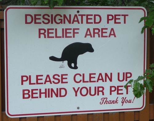Who Has A Pooping Beaver Sign Quotes Funny Signs Signs