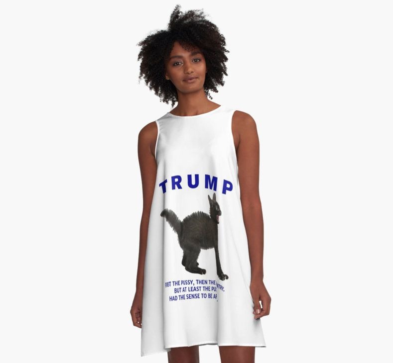 Anti-Trump Kitty/Power Grab