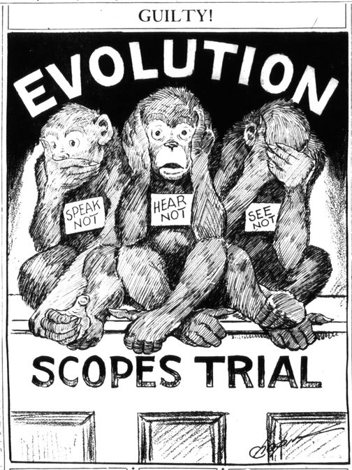 Darwin And Evolution In Cartoons And Caricatures Apush Political