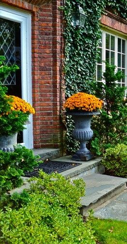 Decorating With Urns the Fall Edition Autumn curb appeal - Decorating with mums in urns for Fall! These stately back urns flanking the front door and spilling over with deep orange mums are all you need to make a gorgeous statement for the season. The brick facade and climbing ivy only add to the character of the home.