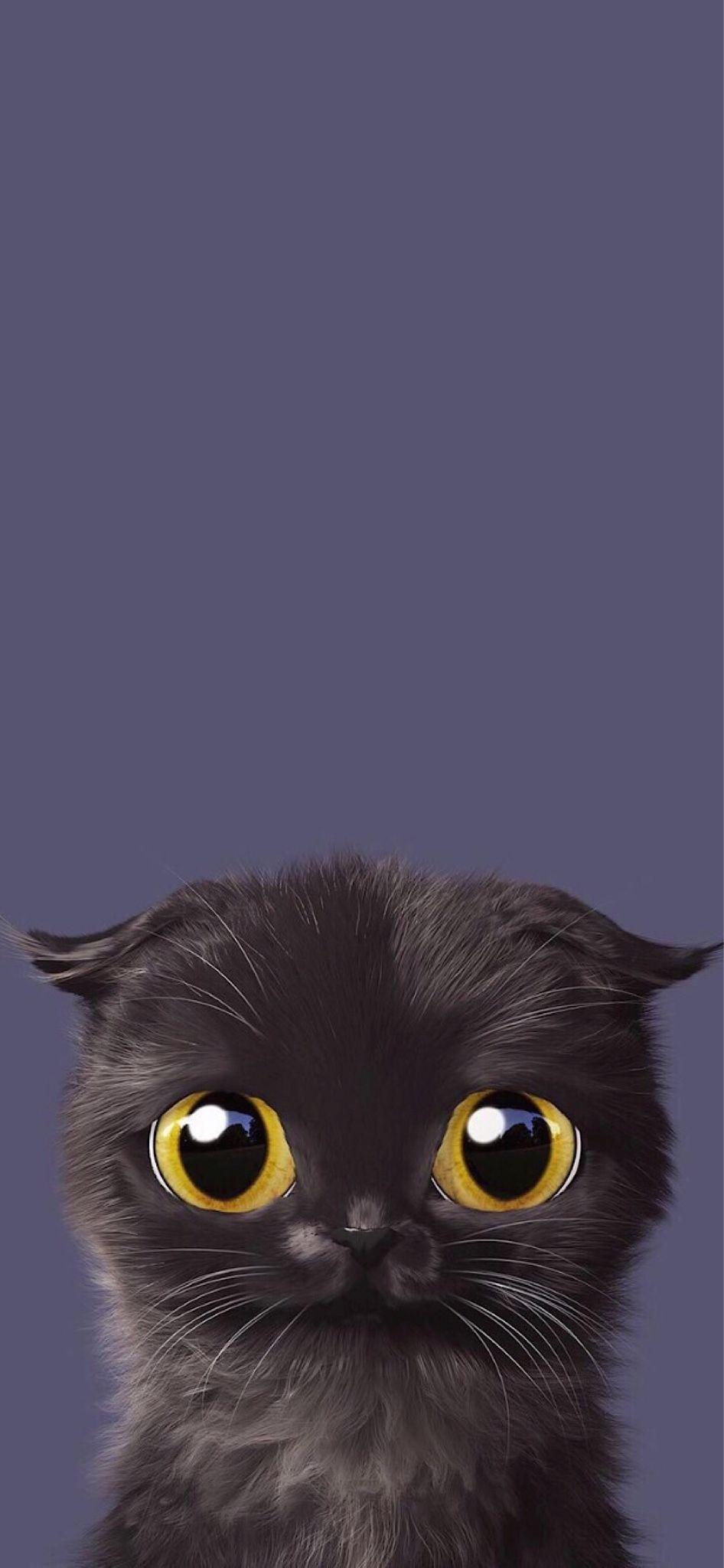 Pin By Lola Bishop On Iphone X Cute Cat Wallpaper Cat Wallpaper Animal Wallpaper