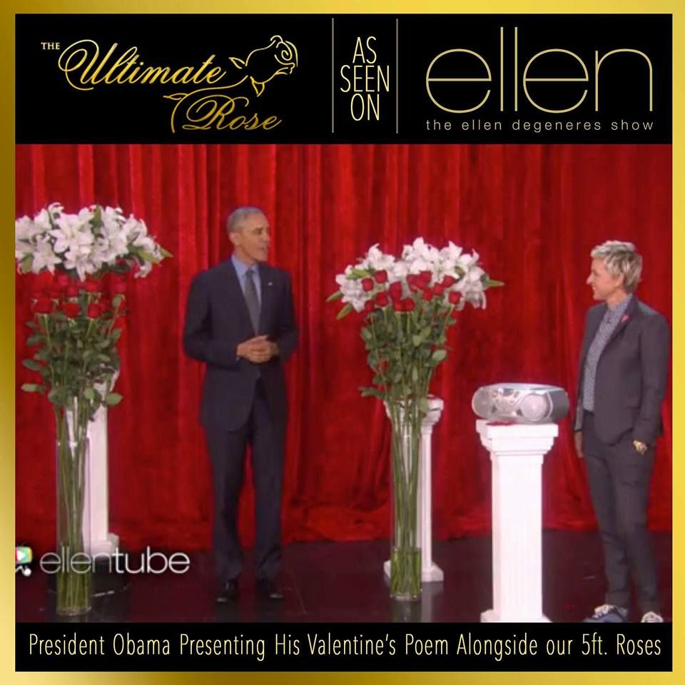 Our 5 Foot Roses On The Ellen Degeneres Show With President Barack Obama Theultimaterose Com The Rose Floral Arrangements Rose Delivery Ellen Degeneres Show