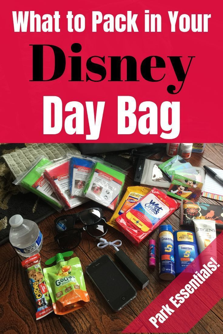 Disney Park Bag Checklist: What to Pack in Your Disney Day Bag Here's what we pack in our Disney park bag for hassle-free family travel!  Pack the perfect Disney day bag with all of these essentials to help make your vacation more enjoyable.