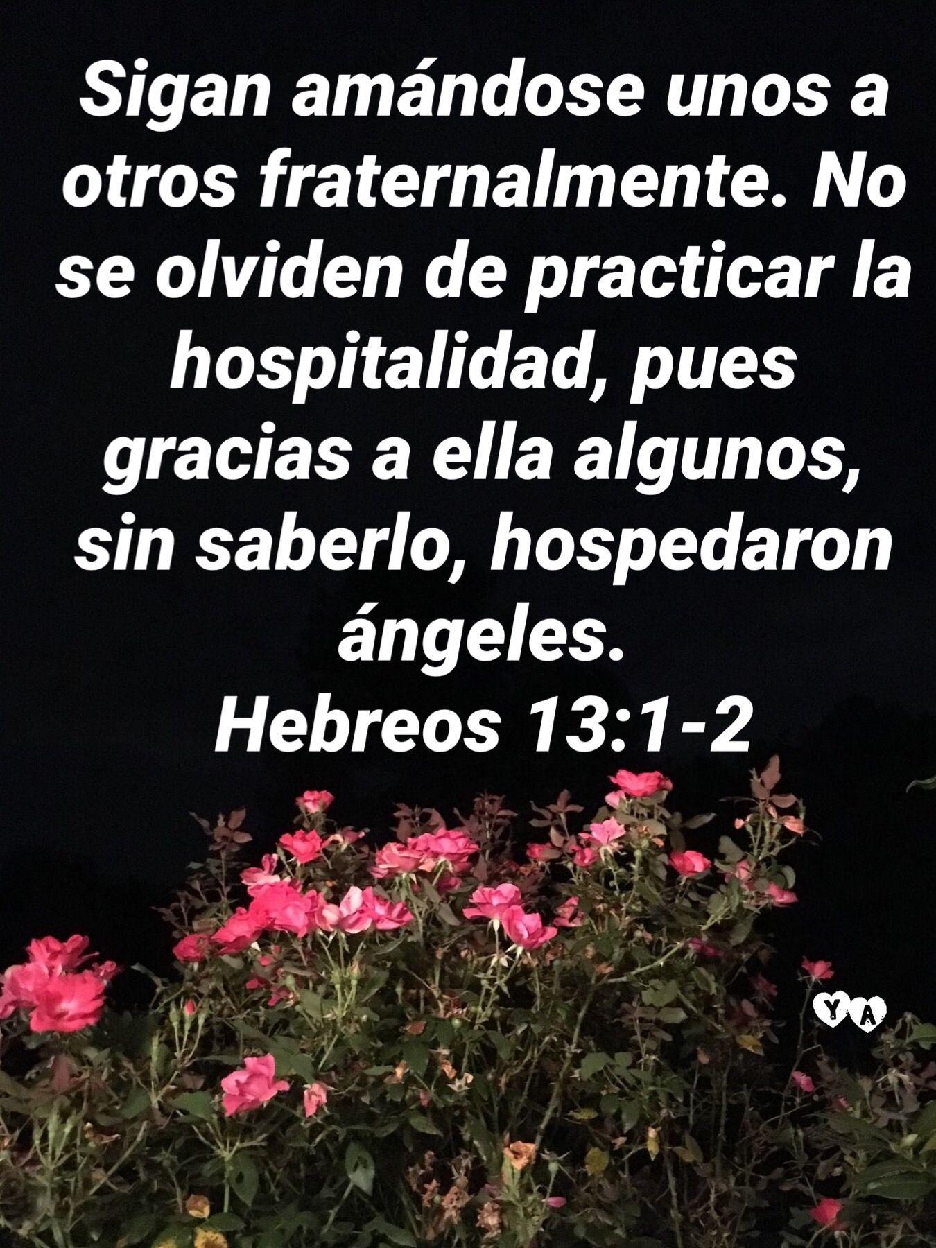 Pin De Vanessa Molina En Tarjetas Cristianas Palabra De Vida El Amor Biblia Versículos Bíblicos