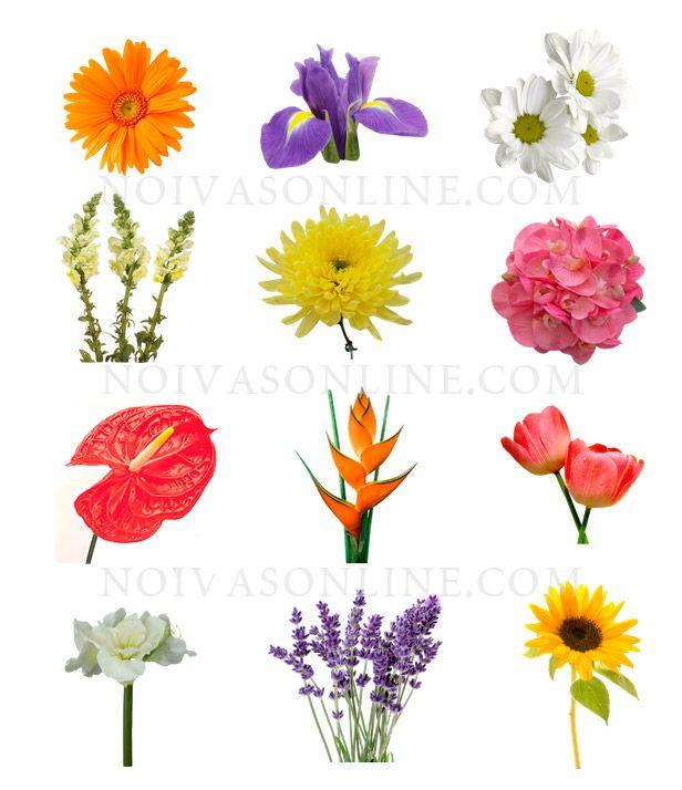 Flores para decorao de casamentos flower charts pinterest flores para decorao de casamentos types of flowers real flowers colorful flowers pretty mightylinksfo