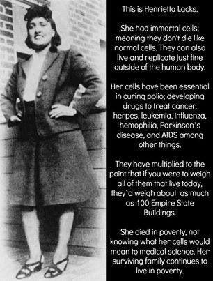 The Immortal Life Of Henrietta Lacks Quotes The Immortal Life Of Henrietta Lacks  Truth  Pinterest  Henrietta .