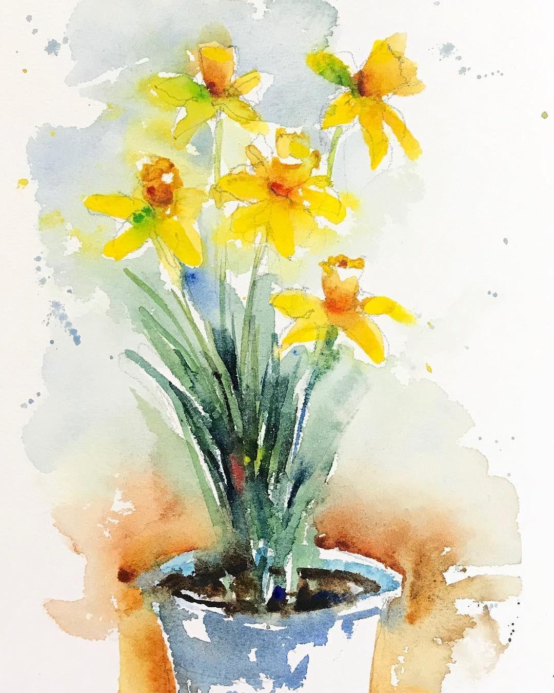 Early Daffodils Fleur Flower Daffodils Jonquilles Daffodil
