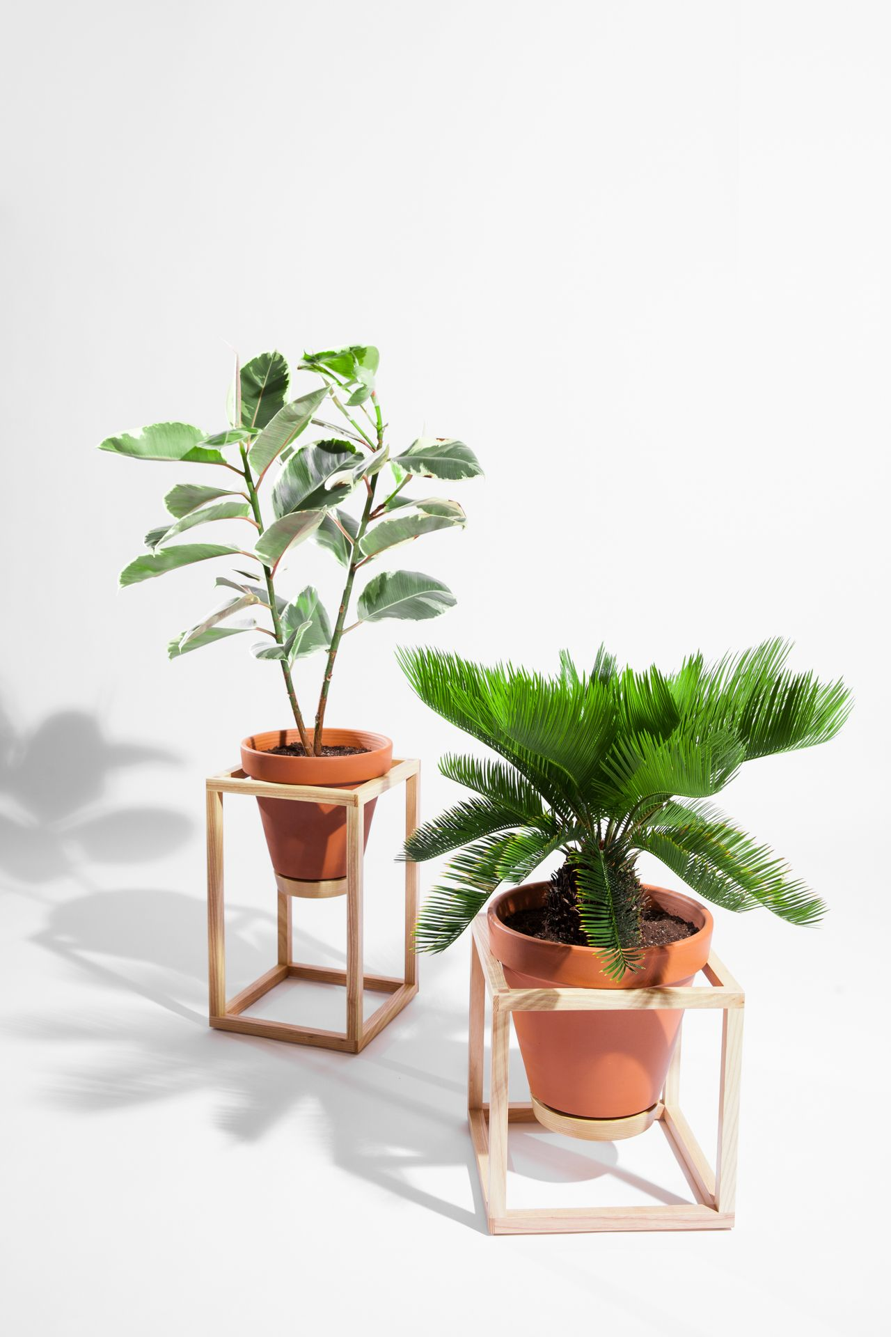 The Frame Planters  A Line Of Indoor Planters