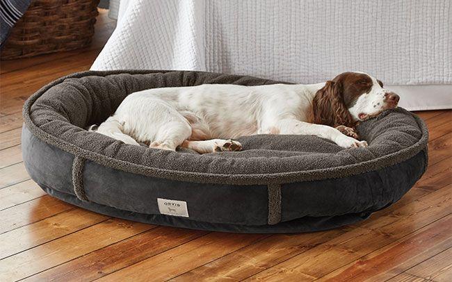 Wraparound Dog Bed / Large Dogs 5080 Lbs, Slate dog