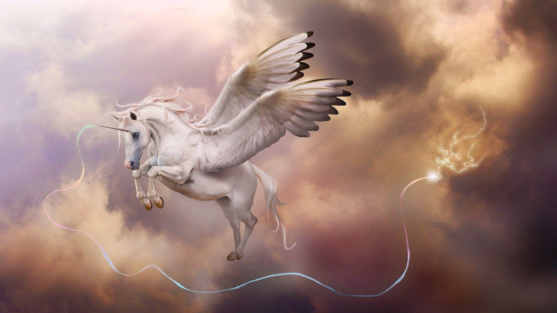 fantasy unicorn hd wallpapers 1920x1080 1