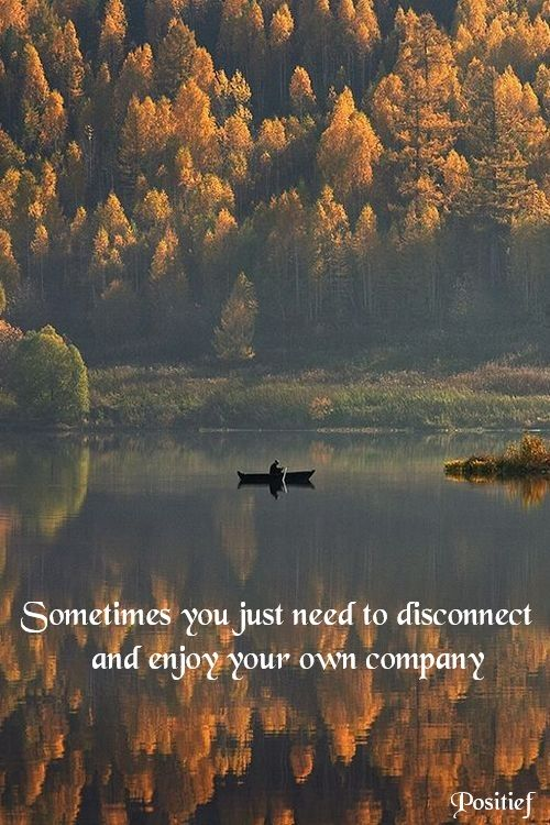 Inspirational quote saying disconnect zen nature