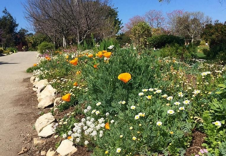 South Coast Botanic Garden Day Trip Relax Enjoy Nature