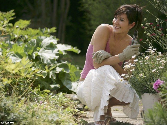 Why gardening makes you HAPPIER It can ward off depression