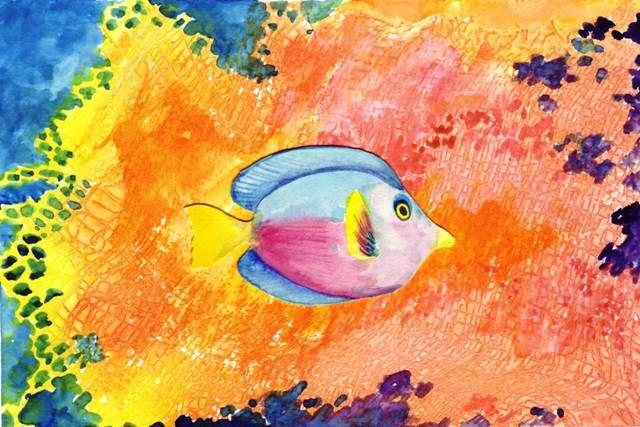 fish 5x7 640x480