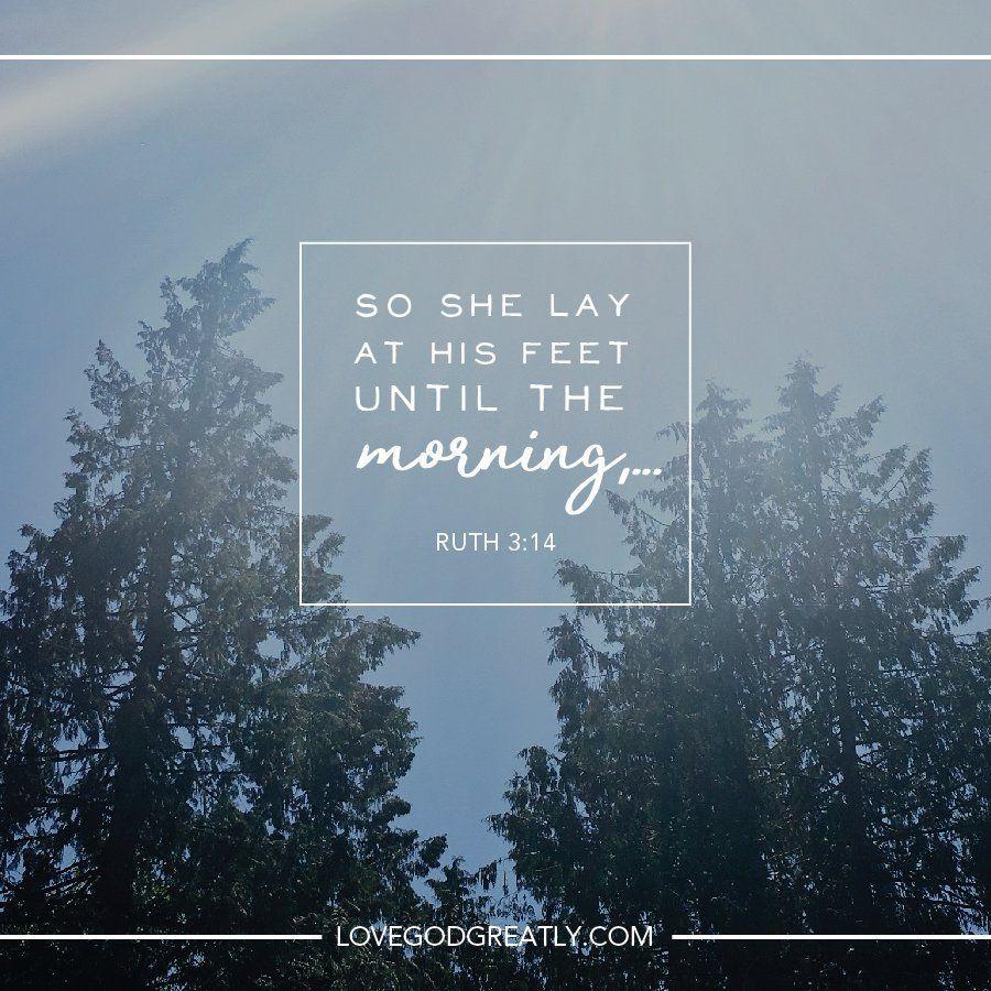Pursuing More of Jesus - eBook: Anne Graham Lotz ...