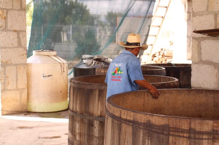 Fermentadores de madera, transforman los azúcares en alcohol.