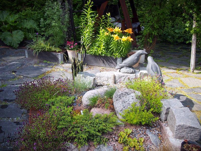 elämää ja elämyksiä: puutarha