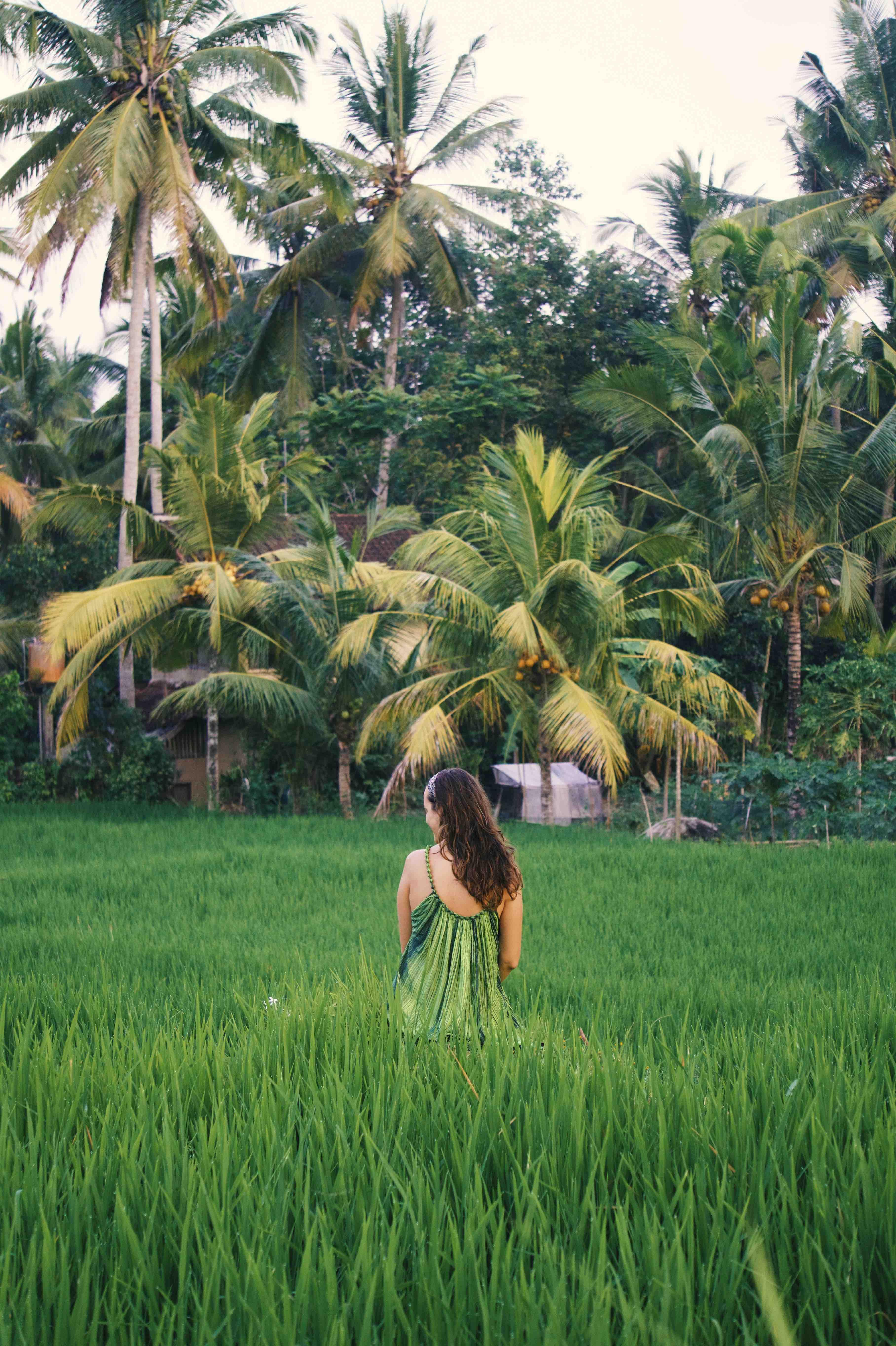 Ubud walk Sari Organic