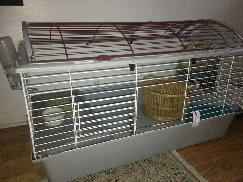 Listing item (With images) Cages for sale, Rabbits for