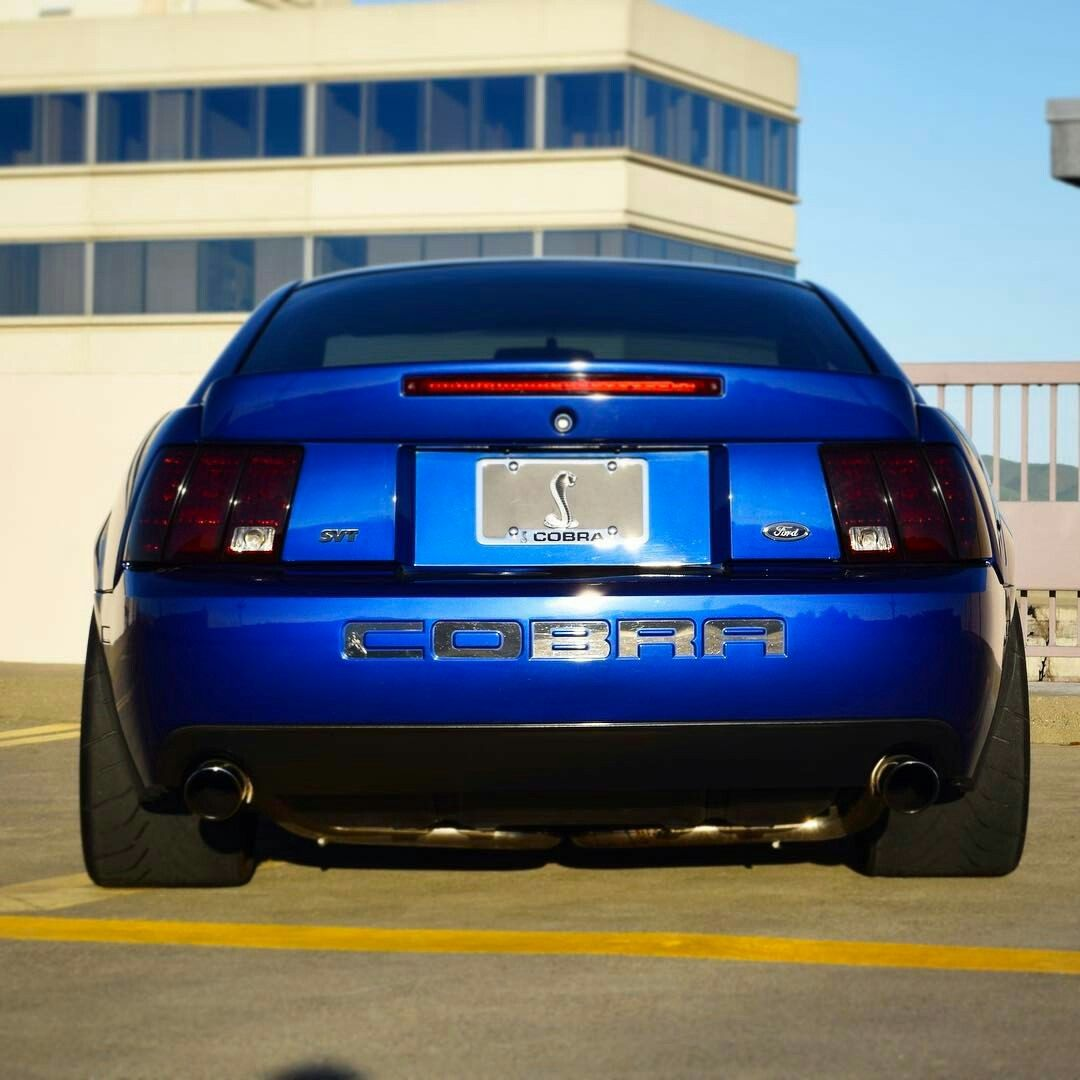 All Types terminator cobra specs : New Edge Mach 1 Mustang and SN95 Mustang Cobra | Sweet Mustangs ...