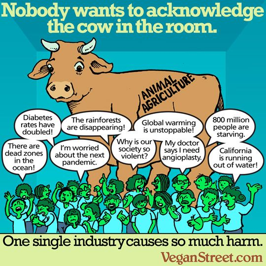 Vegan Street -- The Daily Meme Archive | Animal agriculture, Vegan ...