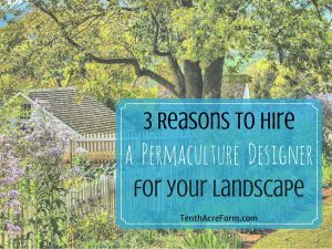 3 Reasons to Hire a Permaculture Designer for your