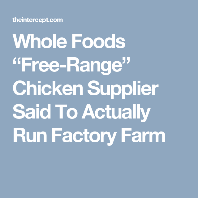 Whole Foods Free Range Chicken Supplier Said To Actually Run