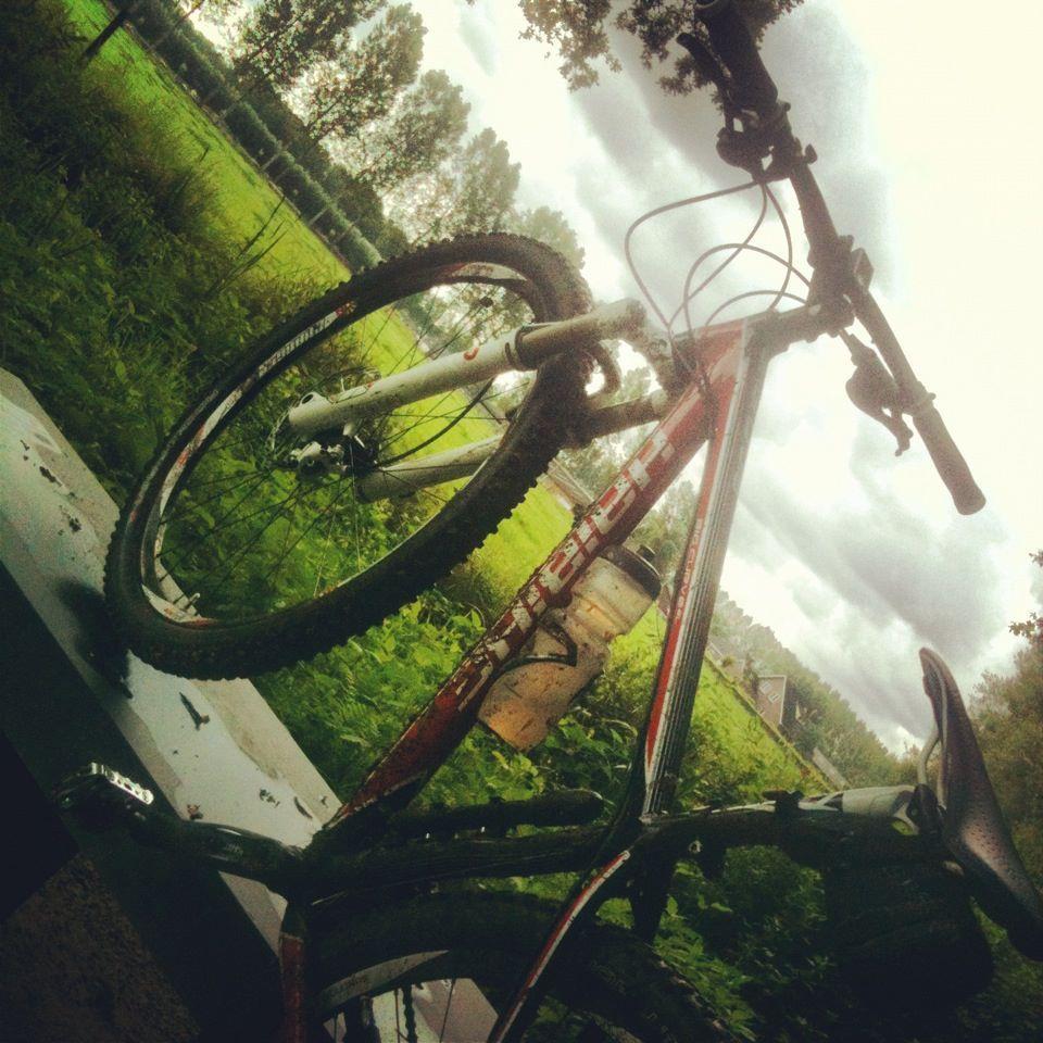Haibike Big Curve 29er Haibike Bikes