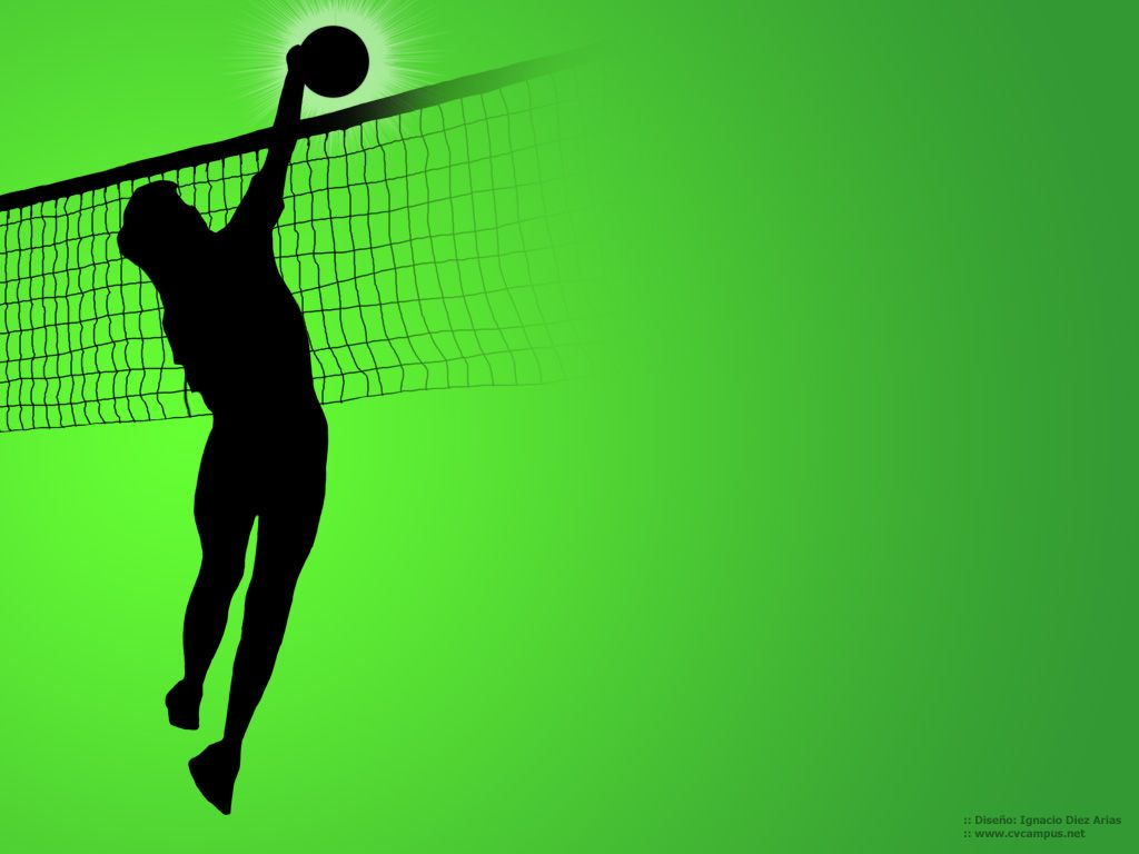 units of Volleyball Wallpaper 1024768 Volleyball Wallpaper 37