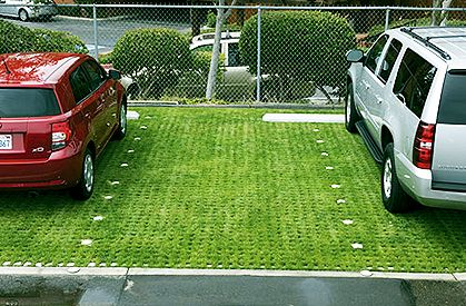 Grasscrete parking | Comprehensive | Grass pavers, Yard
