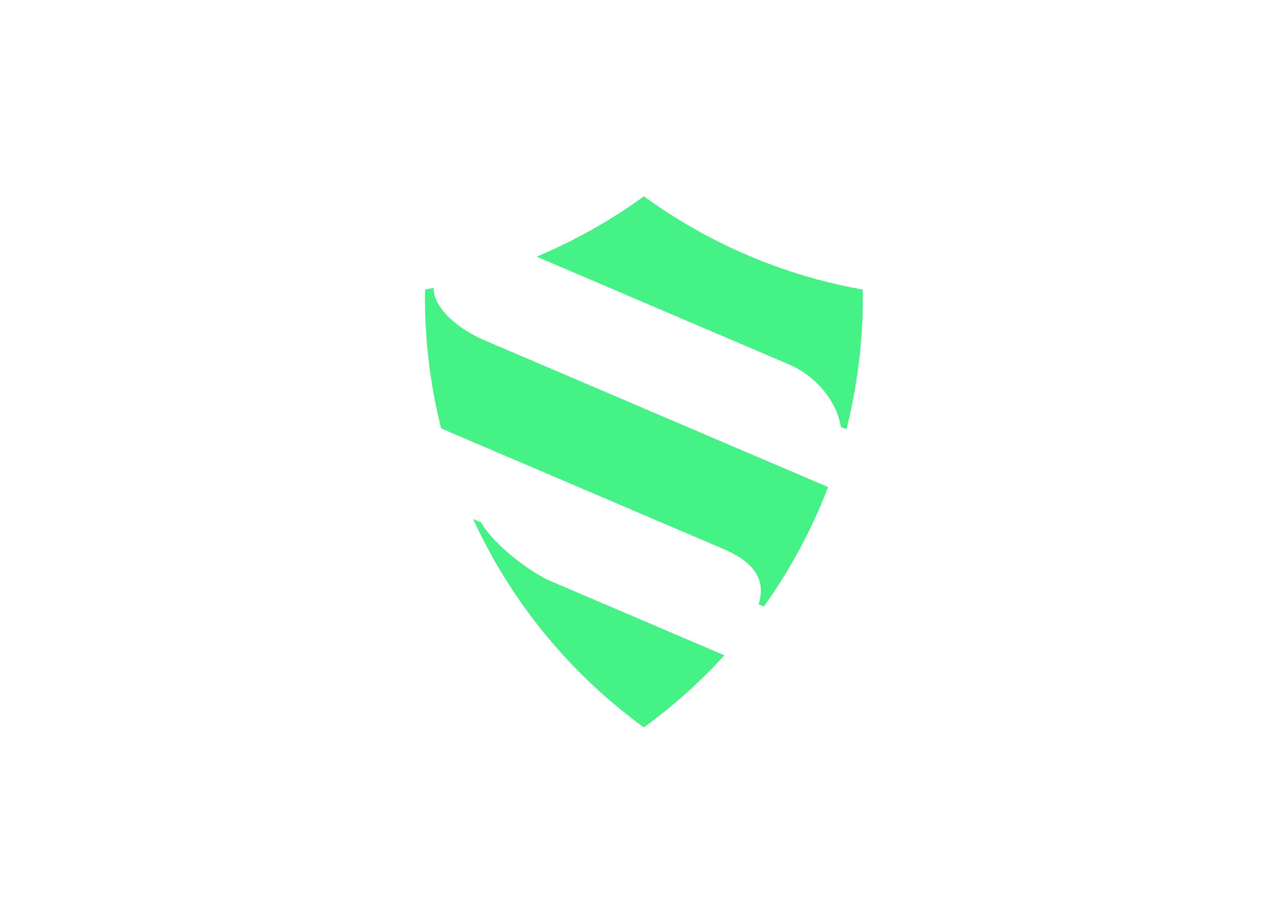 Djalma Santos Icon Shield symbol derived from the Palmeiras team