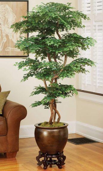 24 plantas perfeitas para decorar o interior da sua casa Plantas - decoracion de interiores con plantas