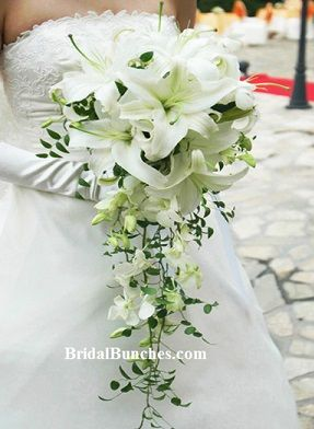 White stargazer lily lilies wedding flowers bridal bouquet choose white stargazer lily lilies wedding flowers bridal bouquet choose your color mightylinksfo