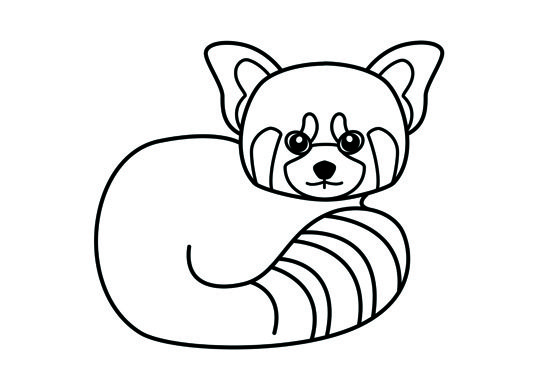 Red Panda Coloring Page Panda Coloring Pages Red Panda Panda Illustration