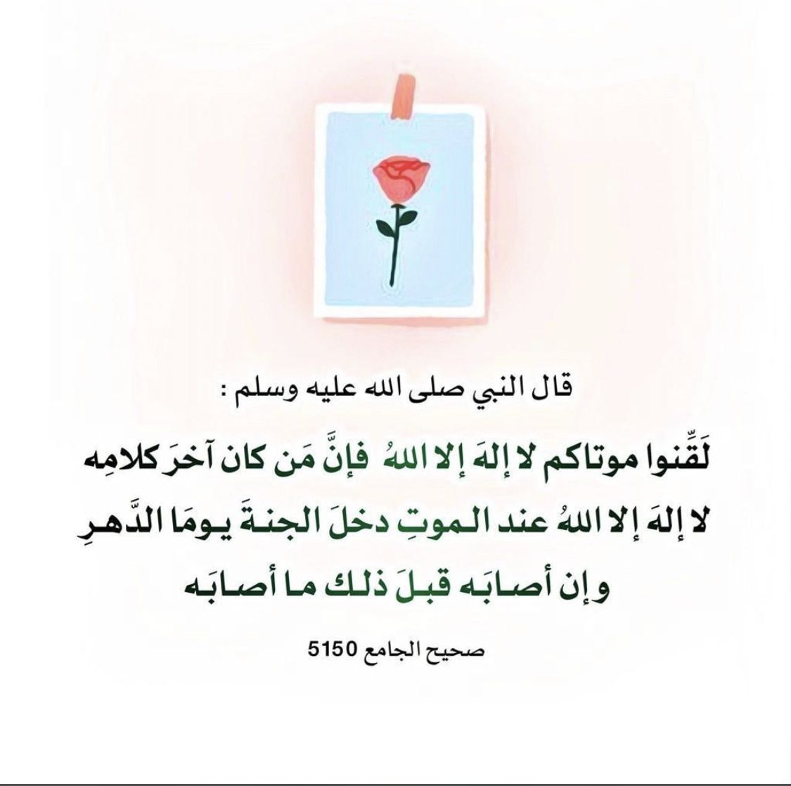 Pin By صفحات On حديث In 2020 Words Quotes Words Quotes