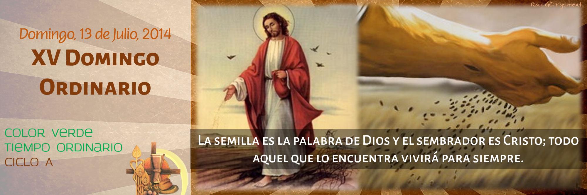 Ciclo A, XV Domingo Ordinario Twitter