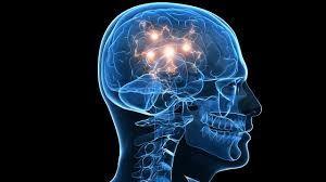 Blog noticias,actualidad,y mucho más: ¿Qué es más rápido el cerebro humano o un ordenado...