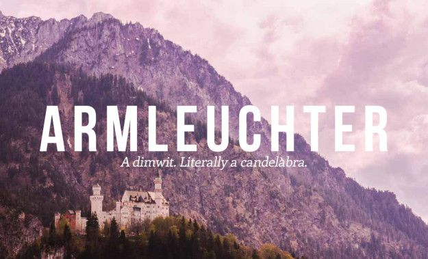 Photo of 17 Deeply Satisfying German Insults We Need In English