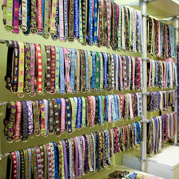 how to display dog collars - Google Search | Pet store design