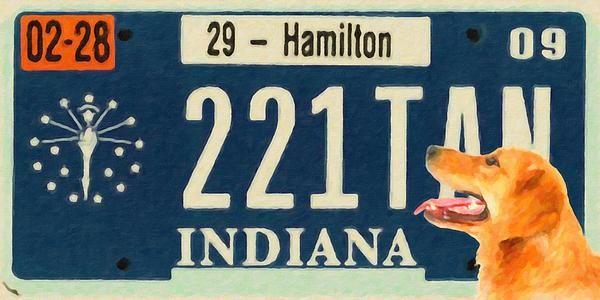 I uploaded new artwork to fineartamerica.com! - 'Indiana License Plate' - http://fineartamerica.com/featured/indiana-license-plate-lanjee-chee.html via @fineartamerica