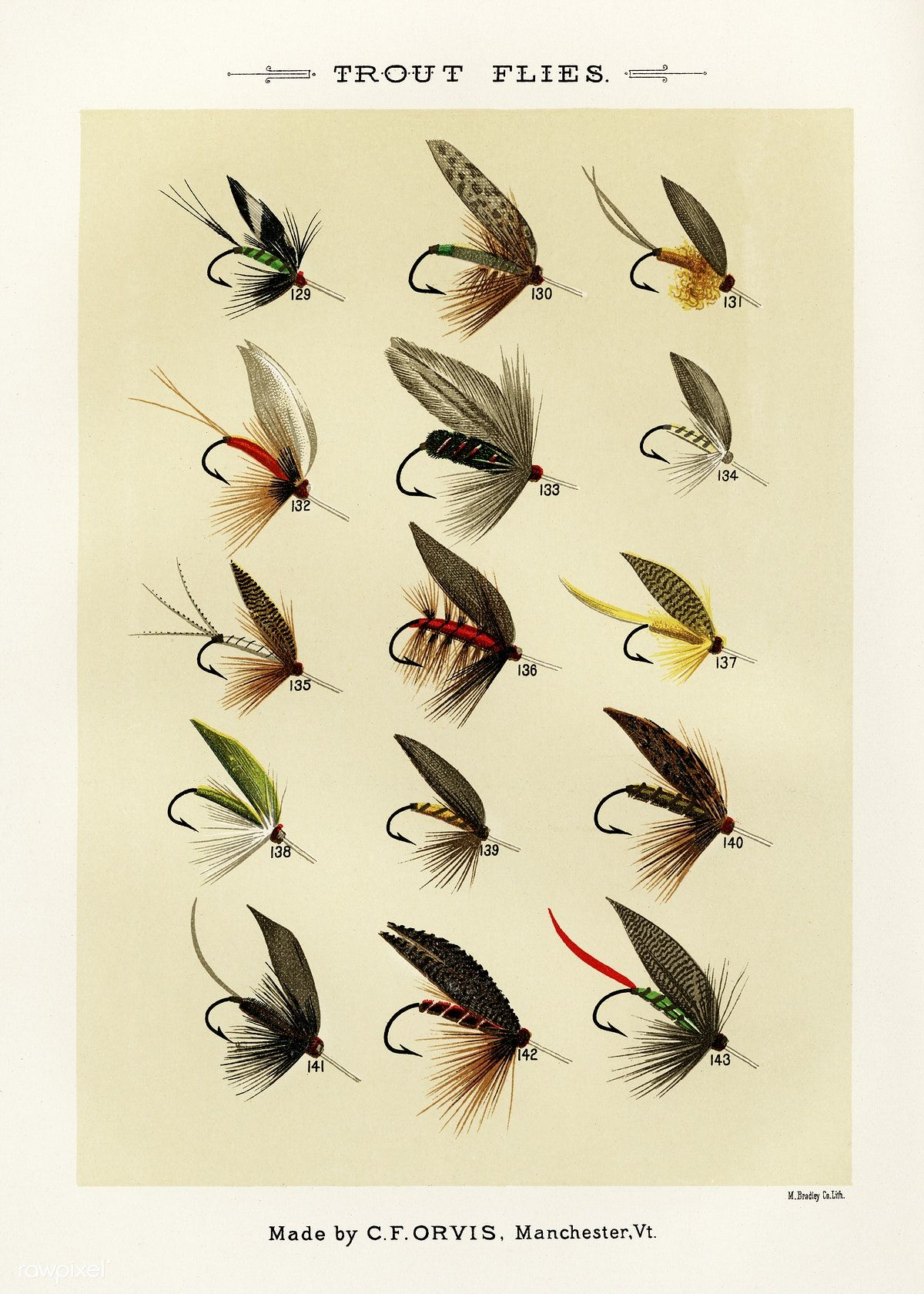 Free Public Domain Www Rawpixel Com Fishing Insects Trout Flies From Favorite Flies And Their His Fly Fishing Flies Trout Fly Fishing Lures Fly Fishing