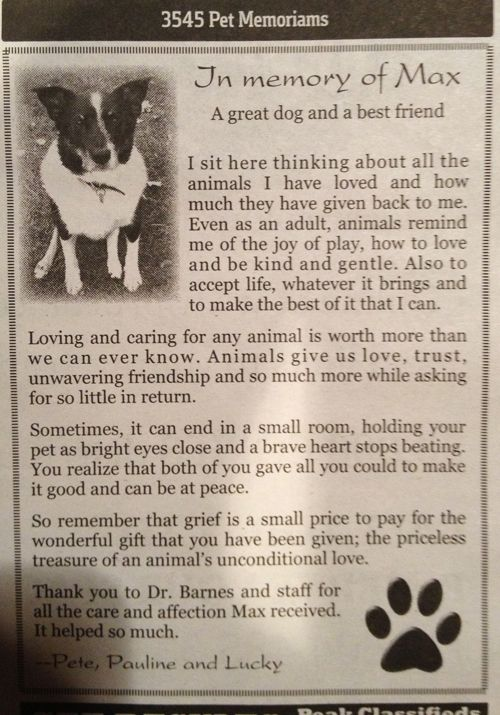 Pet Obituary This Beautiful Obituary Made Me Wonder What The Impact Would Be If Each Vegan Took It Upon Him Herself To Place One Obituary In Their Local