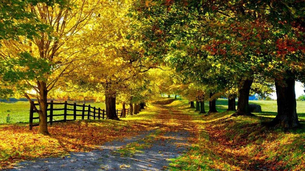 Hermosos Paisajes Naturales Fondos Pantalla Autumn Landscape Nature Wallpapers 6 Beautiful Nature Nature Wallpaper Landscape