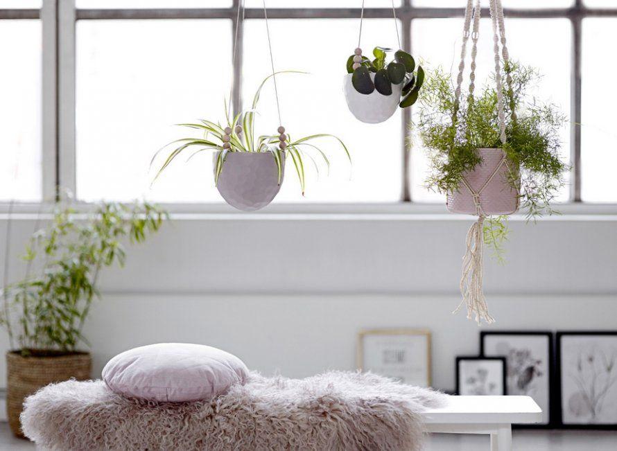 cache pot suspendre plant hanger b ton klevering. Black Bedroom Furniture Sets. Home Design Ideas