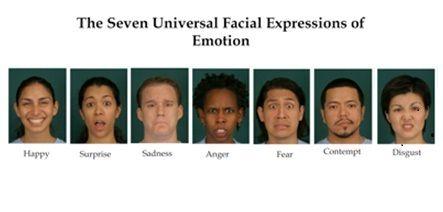 Seven Universal Facial Expressions 44