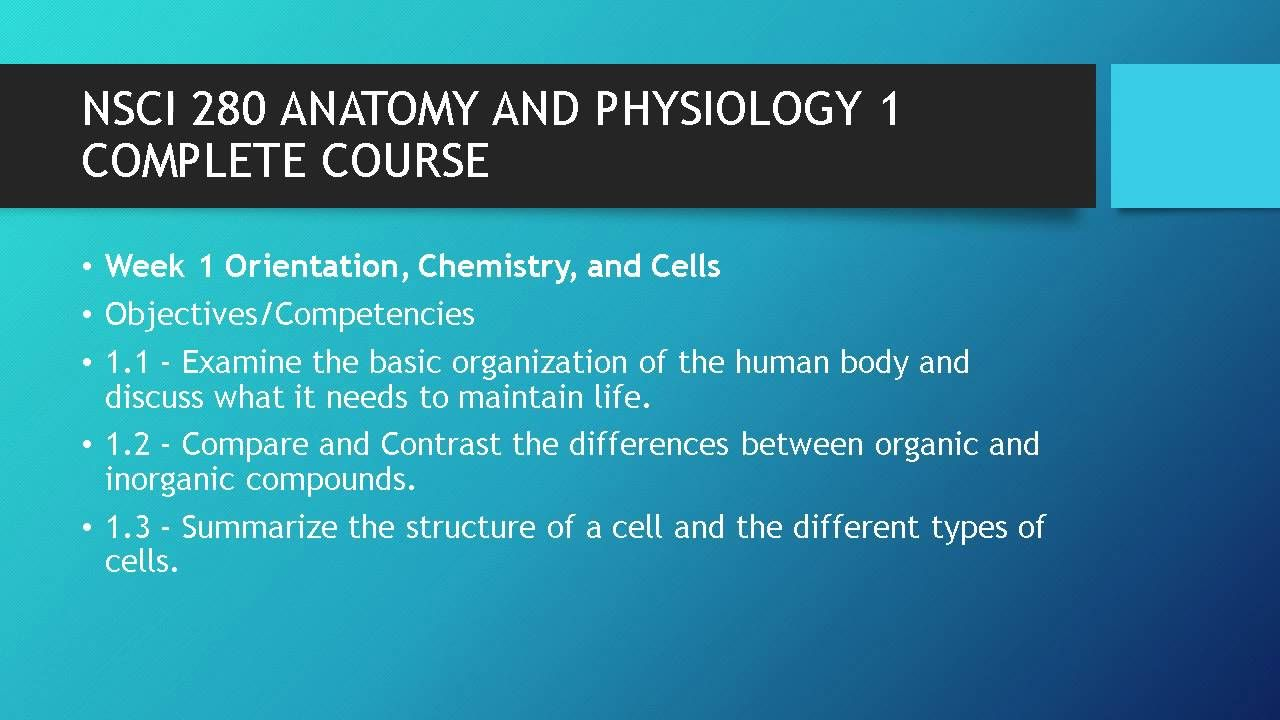 NSCI 280 ANATOMY AND PHYSIOLOGY 1 COMPLETE COURSE #https://youtu.be ...