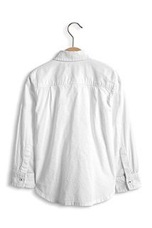 Esprit / Buttondownoverhemd, 100% katoen