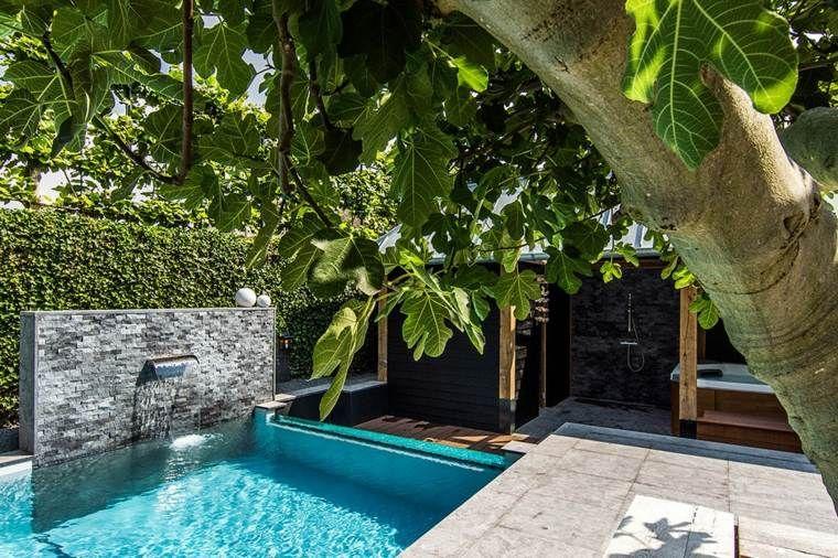 Petit Jardin Avec Piscine Pour Un Ete Rafraichissant Cascade Piscine Jardins Petits Jardins