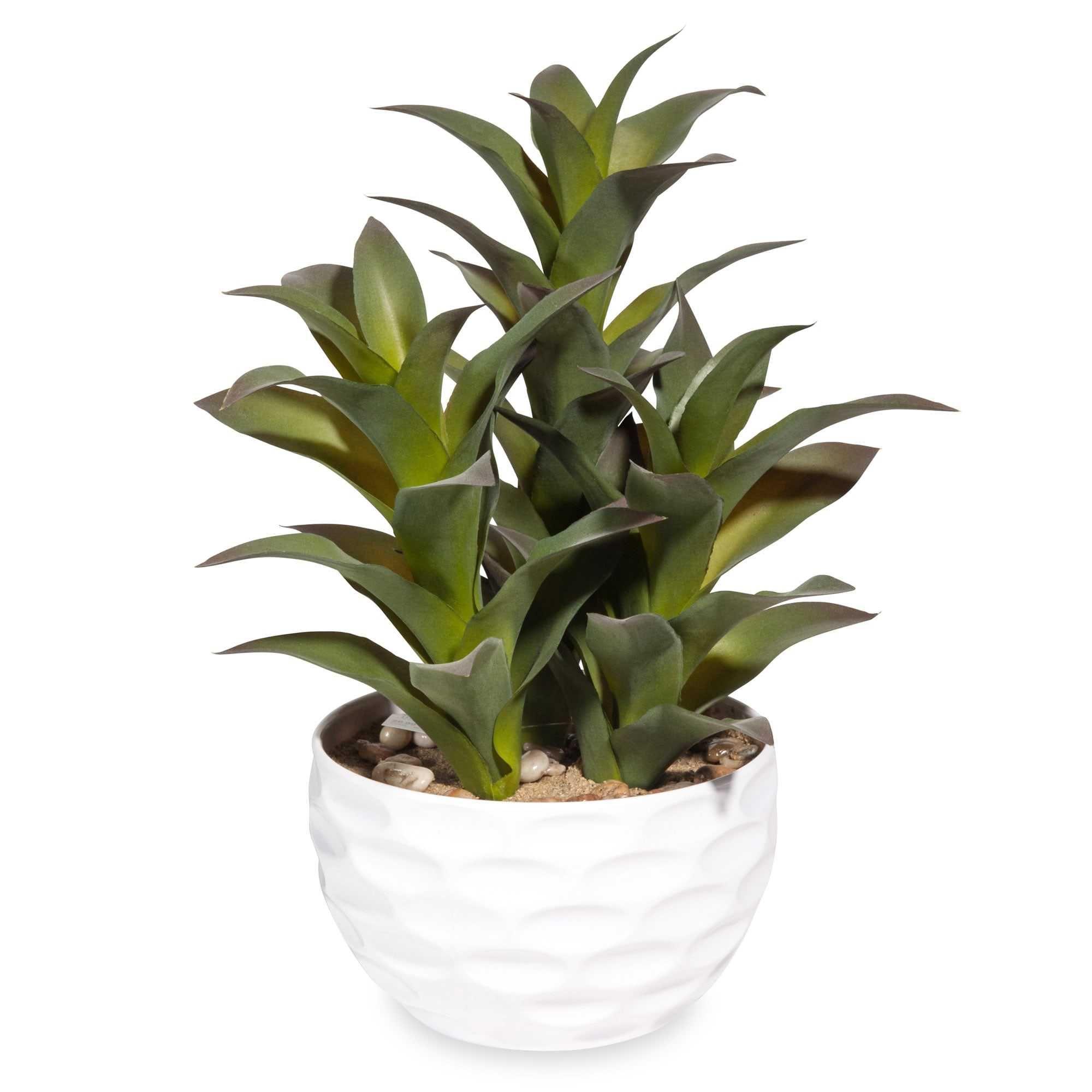 Beste Von Deko Pflanzen Ideen