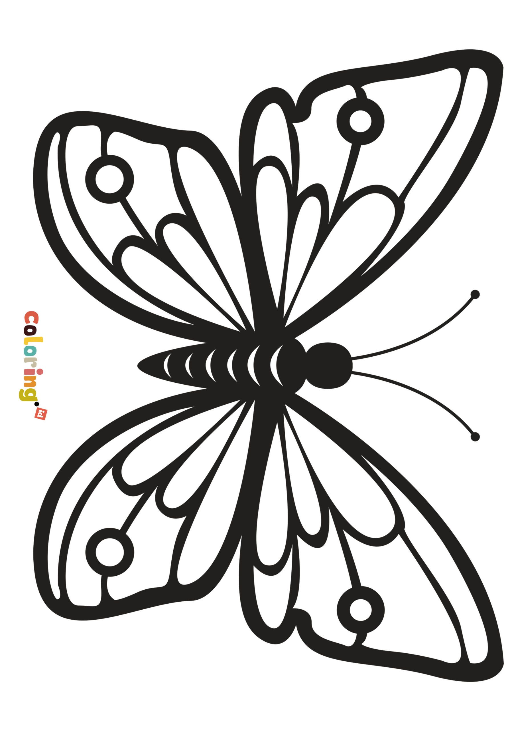 Butterfly Coloring Page All Animal Coloring Pages
